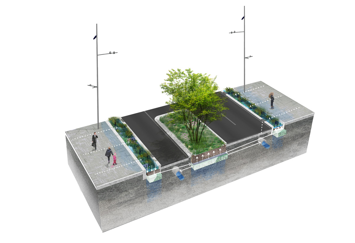 Axo-rainwater
